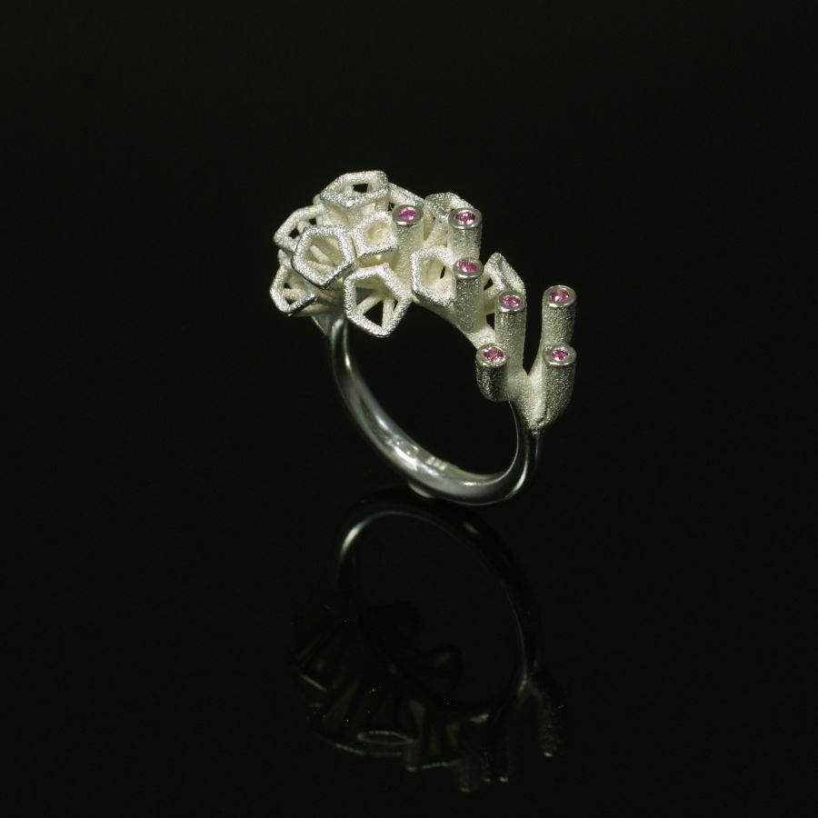 Ring-Silber