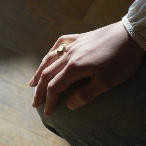 Ring Facetten